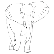 coloring pages elephant and piggie elephant and piggie coloring pages free elephant coloring pages