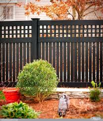 Screen Ideas For Backyard Privacy by Outdoor Privacy Fence U2013 Creativealternatives Co