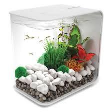 Aquarium For Home Decoration Penn Plax Simplicity 5 5 Desktop Aquarium Hayneedle