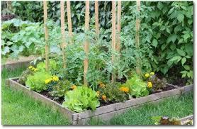 Gardening Layout Planning A Vegetable Garden Layout For Beginner Gardeners
