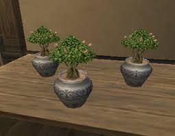 tree saplings ffxiclopedia fandom powered by wikia