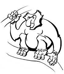 printable monkey coloring pages proboscis monkey coloring page animals town animals color