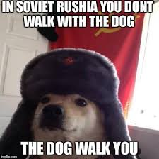 Shibe Meme Maker - russian doge meme generator imgflip