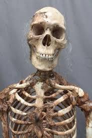 Halloween Decorations Life Size Skeleton by 3 Crime Scene Skeletons The Walking Dead Halloween Prop