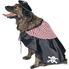 Squirrel Dog Halloween Costume Amazon Topsung Cool Caribbean Pirate Pet Halloween Costume
