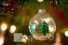 Christmas Decorations Come Down Archives Photography Tips Blog By Mom And Camera