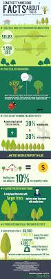 5 pretty awesome facts about trees infographic