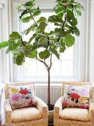 five have to have it summer home decor trends realty times