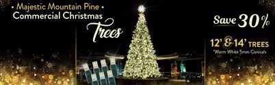 led lights trees designers