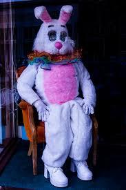 easter bunny costume easter bunny costume photograph by garry