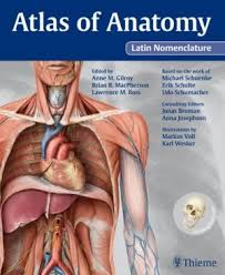 Netter Atlas Of Human Anatomy Pdf Download Thieme Atlas Of Anatomy Latin Nomenclature Pdf Mrcog Pinterest
