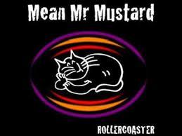 mr mustard mr mustard rollercoaster