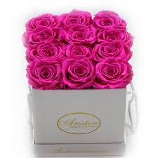hot pink roses everlasting hot pink roses ariston flowers and boutique