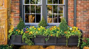 Flowers For Window Boxes Partial Shade - fall container gardening ideas southern living