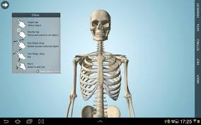 Anatomy And Physiology Apps Anatomy 3d Anatronica Android Apps On Google Play