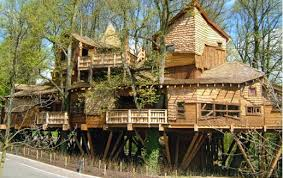 Top 10 Best  Coolest Tree Houses in the World  Grab List