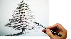 how to draw a realistic christmas tree with pencil draw step by