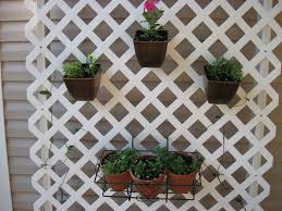 trellis container gardening provide vertical hanging space for