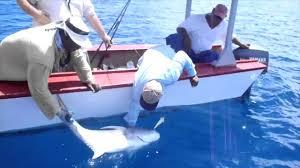christmas island fishing may 2014 youtube