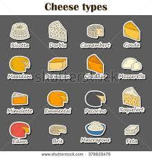 cuisine concept set cheese type icons เวกเตอร สต อก 379820479
