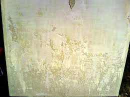 venetian plaster faux finish paint patina wallpaper