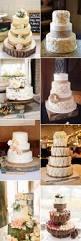 best 25 best wedding cakes ideas on pinterest beautiful wedding