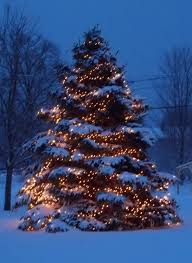 christmas tree with snow beautiful christmas tree snow merry christmas and happy new year