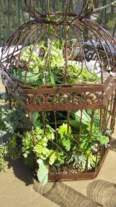 birdcage centerpieces birdcage centerpieces bouquets of
