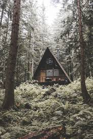 forest house forest house design
