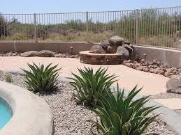 desert backyard landscape theme swimming pool side photo