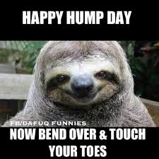 Hump Day Memes - 50 beautiful hump day wish pictures and images