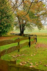 best 25 country fences ideas on rustic fence types