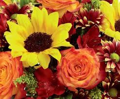 Thanksgiving Flowers 21 Best Thanksgiving Flowers And Centerpieces Images On Pinterest