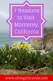 Airbnb Monterey Ca by 7 Reasons To Visit Monterey County California Monterey