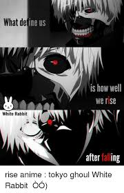 What Defines A Meme - what define us white rabbit is how well we rise after falling rise