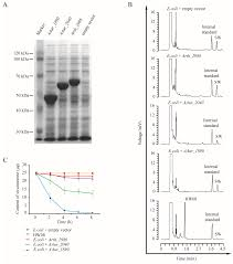 Toxins Free Full Text Degradation Of Swainsonine By The Nadp
