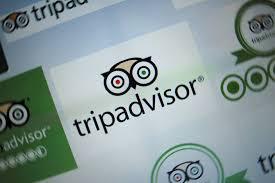 yelp tripadvisor gain legal cover for negative reviews wsj