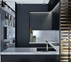 Matte Black Kitchen Cabinets Endearing Matte Black Kitchen Cabinet Cabinets Hardware