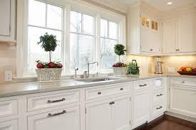 couleur magnolia cuisine cuisine cuisine couleur magnolia avec noir couleur cuisine couleur