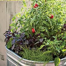 garden design garden design with tips for a container garden