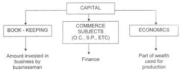 Types Meaning What Is Capital Meaning Features And Types Of Capital