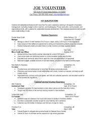 Resume Examples For Volunteer Work by Volunteer Resume Sample