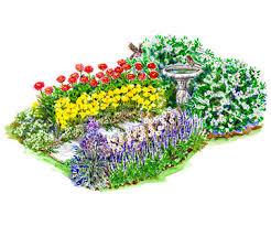 beautiful bird garden plan