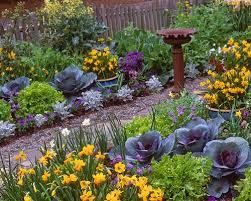 Edible Garden Ideas 908 Best Edible Landscaping Images On Pinterest Vegetables
