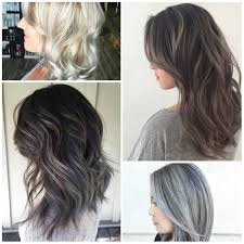 white hair with black lowlights hair highlights best hair color trends 2017 top hair color
