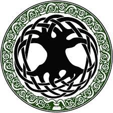 celtic tree of symbol original design celtic tree of