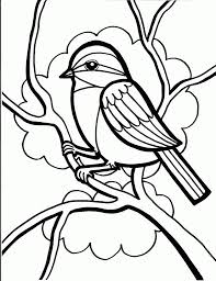 bird coloring pages for kids and kindergarten free printables