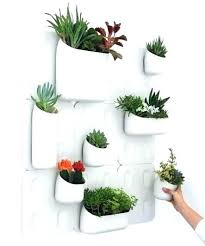 plant wall hangers indoor wall planters indoor wall mounted planters indoor wall planters