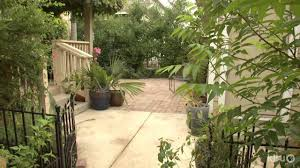 texas native plants native plant design for small garden ida bujan central texas