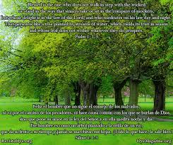quotes en espanol del amor daily photo quote october 2012 oye